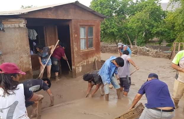 Alcalde de Arica llama al gobierno que declare Emergencia Agrícola a la Región